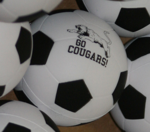 Soccer will likely be one of the first intercollegiate sports organized at CIU i